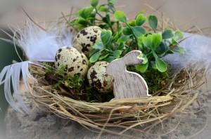 Ostern in der Hundeschule Zimmermann